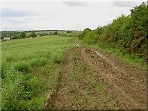 SK4995 : Muddy bridleway to Firsby Hall by Steve  Fareham