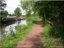 SP0272 : Alvechurch, towpath by Mike Faherty