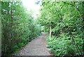 TQ5951 : Bridleway, Dene Park (2) by N Chadwick