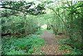 TQ5951 : Bridleway, Dene Park (3) by N Chadwick
