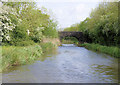 SO9159 : Worcester and Birmingham Canal by Pierre Terre