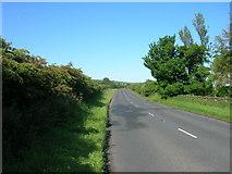 TA0779 : A1039 towards Flixton by JThomas