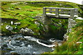 G5588 : Port - Stream & footbridge by Joseph Mischyshyn