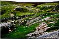 G5588 : Port - Rocky green hillside by Joseph Mischyshyn