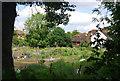 TQ6349 : Allotments, High St, Hadlow by N Chadwick