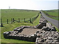 NY6166 : Hadrian's Wall and Turret 49b (Birdoswald) (2) by Mike Quinn