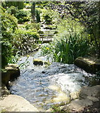 TQ2882 : The waterfall in Queen Mary's Gardens, Regent's Park by pam fray