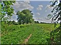 SK6543 : A footpath to Bulcote by johnfromnotts