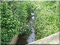 ST5570 : The Ashton Brook flows out of Long Ashton and under Yanley Lane by Dr Duncan Pepper
