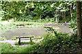 SJ8991 : Nickie's Pool by Gerald England