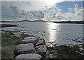 V4579 : Valentia river by Dennis Turner