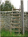 NU1415 : Fire ladder, wall of Hulne Park by Andy F