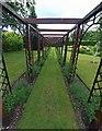 SE8048 : Sweet pea arbour, Burnby Hall Gardens, Pocklington by Steve  Fareham