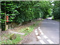 SY7787 : Crossways: postbox № DT2 175 by Chris Downer