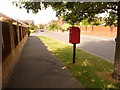 SY9289 : Sandford: postbox № BH20 113, Forest Edge Road by Chris Downer