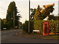 SU0301 : Colehill: postbox № BH21 127 and phone, Sandy Lane by Chris Downer