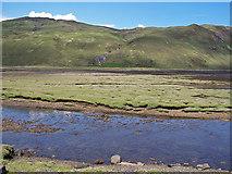 NG4930 : Across Loch Sligachan by Richard Dorrell