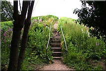 SP4802 : The steps up Jarn Mound by Steve Daniels