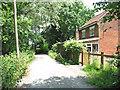 TG3206 : Beerlick's Loke past Marsh Cottage by Evelyn Simak