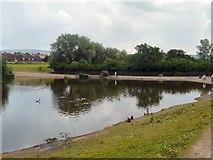 SJ9599 : Stamford Park Fishing Lake by Gerald England