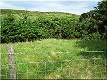 C3841 : Ballinglough Townland by Kenneth  Allen