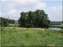 SP9676 : Riverside view looking towards Woodford by Michael Trolove