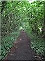 SJ3378 : Bridleway north of Street Hey Lane by David Quinn