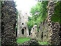 TM2396 : The ruins of St Mary's church - view west by Evelyn Simak