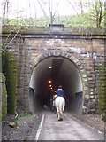 SE2800 : Trans Pennine Trail at Thurgoland Tunnel by Martin Speck