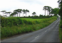 R7581 : R494 near Portroe, Co. Tipperary by Dylan Moore