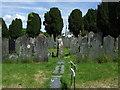 SN1943 : Ogham stone in the churchyard by ceridwen