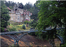 NU0702 : Cragside house and the Iron Bridge by Andy F