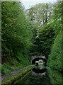 SJ8219 : Entering Cowley Tunnel near Gnosall, Staffordshire by Roger  Kidd