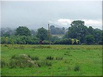 R6866 : Field near Birdhill, Co. Tipperary by Dylan Moore