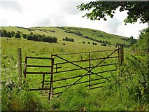 N4733 : Gate and pasture near Croghan, Co. Offaly by Dylan Moore