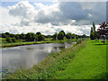 N4727 : Grand Canal: Daingean, Co. Offaly by Dylan Moore