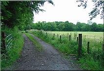 N5841 : Farm track near Ballinabrackey, Co. Meath by Dylan Moore