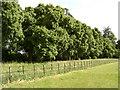 SP4238 : Broughton Grange by Robin Stott