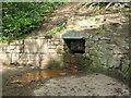 NZ2665 : Ye Well of King John by Mike Quinn
