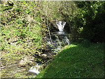 NY9038 : Waterfalls on Middlehope Burn by Mike Quinn