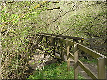 NY9038 : Footbridge over Middlehope Burn by Mike Quinn