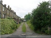 SE1527 : Back Mayfield Place - Avenue by Betty Longbottom