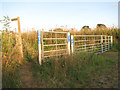 TG2706 : Bridleway to Kirby Bedon by Evelyn Simak