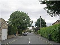 SE1527 : Elizabeth Avenue - Huddersfield Road by Betty Longbottom