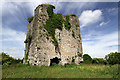 R6111 : Castles of Munster: Castle Pook, Cork by Mike Searle