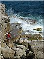 SY6768 : Tourists on Portland Bill rocks by John Goldsmith