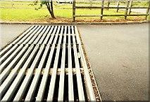 J0731 : Cattle grid near Newry by Albert Bridge
