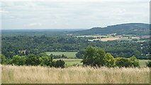 TQ1450 : View From Ranmore Common, Surrey (2) by Peter Trimming