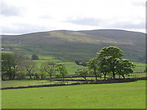 NY9038 : Pastures below Low Crooked Well by Mike Quinn