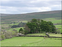 NY9038 : Pastures below Low Crooked Well (4) by Mike Quinn